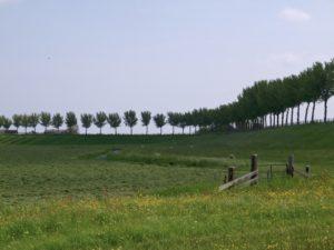 Beemsterdijk