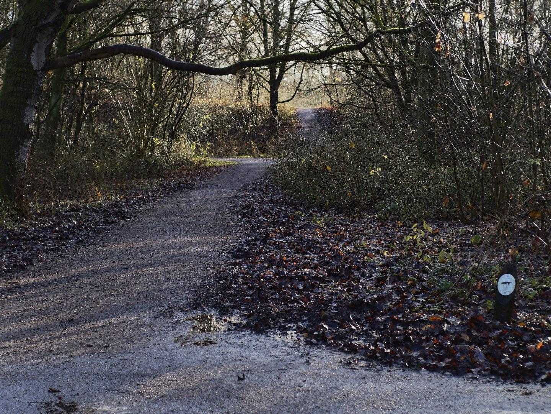pad en heuvel