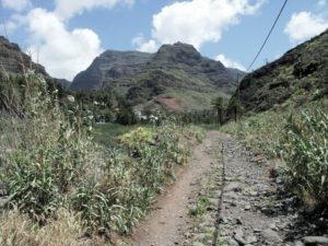 Baranco de Valle Gran Rey